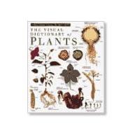Eyewitness Visual Dictionary: Plants (DK Visual Dictionaries)