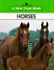 img - for Horses book / textbook / text book