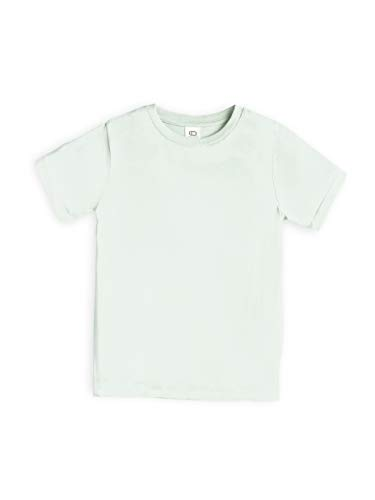 Colored Organics Infant Toddlers and Kids Organic Cotton Short Sleeve Crew Neck Tee Shirt - Seafoam Green - 12-18M