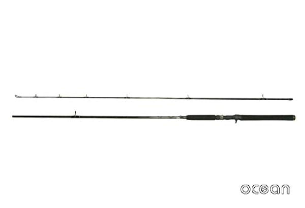 [해외] OCEAN오션 넙치 씨배스 야채 루어 베이트 캐스팅 루어 로드 TR04W-9'0B