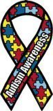 Made in USA Autism Awareness Magnet 4 X 8 Inches by Flagline