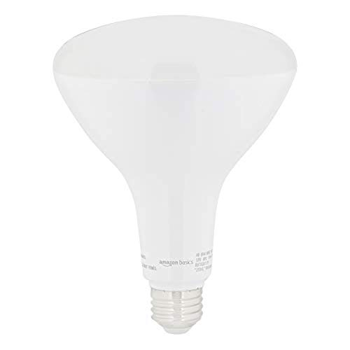 Amazon Basics 80W Equivalent, Daylight, Dimmable, 15,000 Hour Lifetime, BR40 LED Light Bulb | 6-Pack