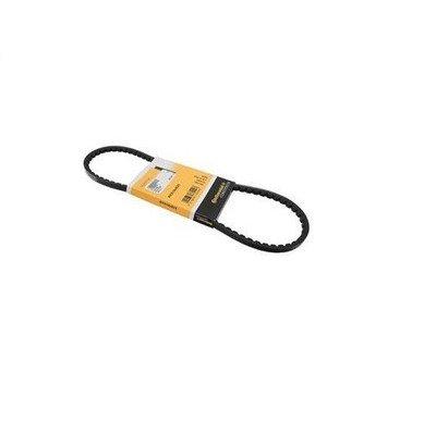 Belt - Alternator - 10 X 825 Contitech