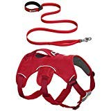 RUFFWEAR RED Web Master Dog Harness and Flat Out Leash Combo ♦ Secure Reflective Supportive Multi USE (Large/XL)