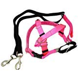 - 2 Hounds Design Freedom No Pull Velvet Lined Dog Harness and Leash Training Package Neon Pink Medium