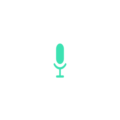 Recorder screen and audio