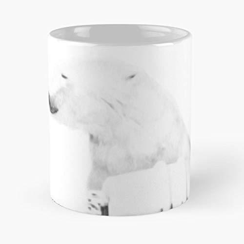 Moneypenny Missmoneypenny Polar Bear Play Time - Ceramic Novelty Mugs 11 Oz, Funny Gift