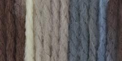 Bulk Buy: Bernat Softee Chunky Ombre Yarn  Natures Way 16112