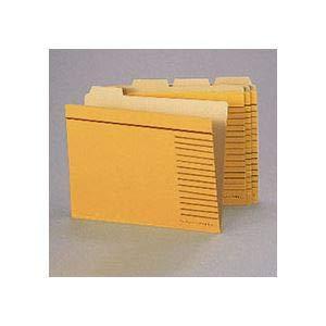 (まとめ)ライオン事務器 カットフォルダー B4判B4-4F-R-20P 1パック(20冊) 【×3セット】 生活用品 インテリア 雑貨 文具 オフィス用品 ファイルボックス 14067381 [並行輸入品] B07L2WS3L5