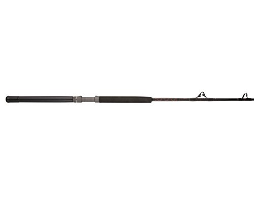 Penn Rampage Boat Casting Fishing Rod