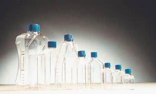 Falcon Tissue Culture Dish - BD Falcon Tissue Culture Flasks, Sterile, BD Biosciences 353014 Canted-Neck