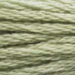 DMC 117-3053 Six Strand Embroidery Cotton