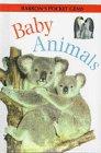Baby Animals, Louisa Somerville, 0764150375