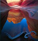 img - for Stone Canyons of the Colorado Plateau book / textbook / text book