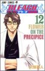 BLEACH 12 (ジャンプ・コミックス)