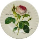 Roy Kirkham Redoute Rose Tea Plate 20cm