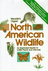 img - for Reader's Digest North American Wildlife book / textbook / text book