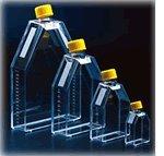 TC 300cm2 Flask Filtered, 3/bag, 18/case