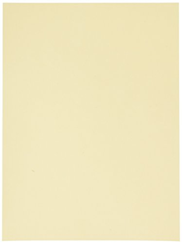 Heavyweight Tagboard, 9 x 12 Inches, Manila, 100 Sheets (5111)