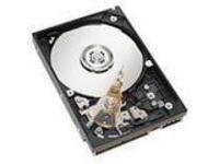 300GB 15K 6Gbps SAS 8.9cm HS