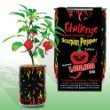Nature's Greeting Trinidad Scorpion Pepper Magic