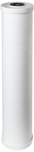 Pentek RFC20-BB Carbon Filter Cartridge, 20