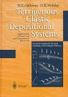 img - for Terrigenous Clastic Depositional Systems: Applications to Fossil Fuel and Groundwater Resources book / textbook / text book