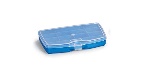 (Small Organizer Storage Box Plastic Container with Clear Lid for Hardware, Parts, Fishing, Toolbox Organizers, Screws, Nuts and Bolts )