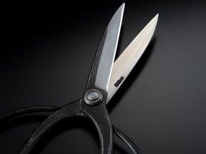 ''SAHO'' Sasuke Style Garden Shears for Right Handers 230mm(abt 9.1'') , Edge : Aogami Steel