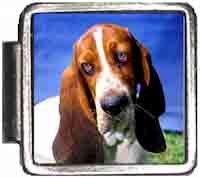 Bassett Hound Dog Italian Charm Bracelet Jewelry Link A10011