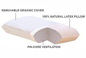 All Natural Premium Latex Pillow With Organic Covering - QUEEN SIZE (Pillow Natural Rubber)