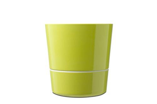 Rosti Mepal Hydro Kräutertopf, Groß, Eos Lime