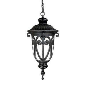 Acclaim Lighting 2116BK Naples - One Light Outdoor Hanging Lantern, Matte Black Finish with Clear Seeded ()
