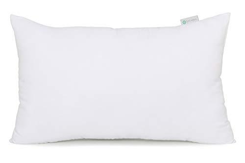 Acanva Decorative Rectangle Throw Pillow Inserts Hypoallergenic Form Stuffer Cushion Sham Filler, 12x24, White