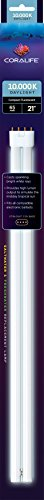 Coralife 05477 Straight Pin Compact Fluorescent Lamp, 65-Wat