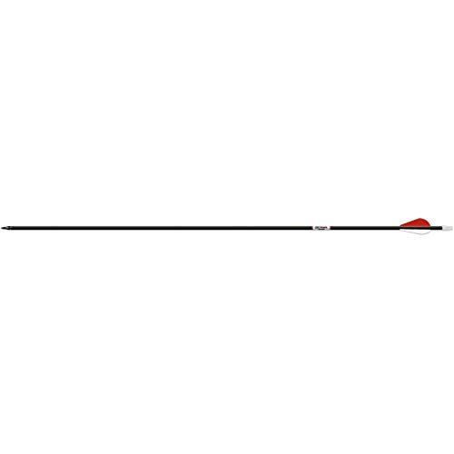 beman carbon arrows - 3
