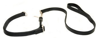 Dean and Tyler Black Snake Dog Leash, Black 4-Feet by 3/4-Inch Width With Stainless Steel Jaw Snap, Fits Neck 22-Inch to 26-Inch.