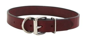 Auburn Tuff Stuff Collar - Burgundy - 1-1/4 x 22 inches
