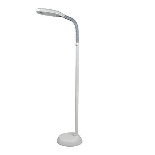 White Sunlight Floor Lamp Gooseneck, Arc Reading Light Modern Contemporary Standing Lamp 6 Ft for Living Room Bedroom, Metal