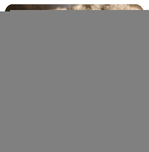 Luxlady Suqare Mousepad 8x8 Inch Mouse Pads/Mat design IMAGE ID: 38378164 funny cat with blurred (Blurred Cats)