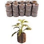 100-count-jiffy-7-peat-pellets-seed-starter-soil-plugs-36-mm-start-seedlings-indoors-easy-to-transpl