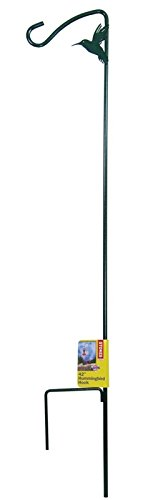 More Birds Shepherd Hook, 42 Inch Hummingbird Feeder Pole Metal Stake with Hook from Stokes Select
