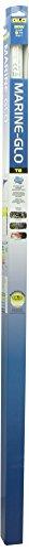 Glo Marine (Glo Marine-Glo T8 Fluorescent Aquarium Bulb, 30-Watt, 36-Inch)