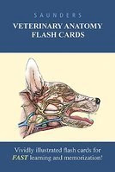 Saunders Veterinary Anatomy Flash Cards [Cards]: Amazon.com: Books