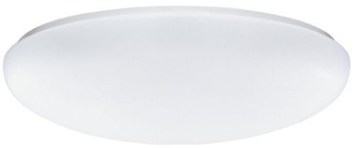 Lithonia Lighting FM 54 ACLR LP M4 2-Light Fluorescent Flush-Mount Ceiling Fixture with White Acrylic Globe