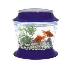 Pet 228259 fish 39 r 39 fun plastic bowl lid 17ltr amazon for Fish bowl amazon