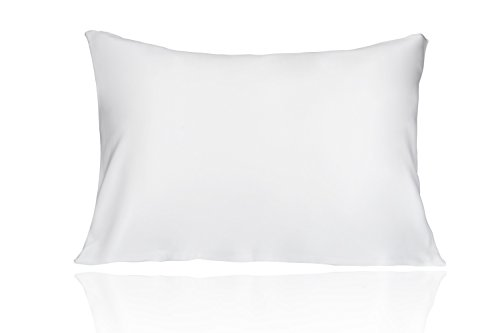 19 Mm Silk (LULUSILK 19 Momme Both Sides 100 Pure Mulberry Silk Pillowcase/Natural Silk Pillow Cover for Hair and Skin Anti Wrinkle Zipper Closure Standard Size White)