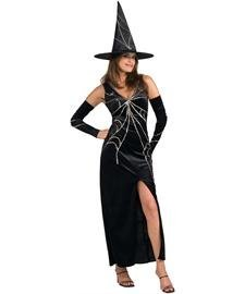 Witch Spinner Costume Web (Web Spinner Witch Fancy Dress Costume -Standard size by)
