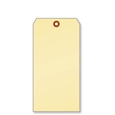 - SmartSign Pack of 100 Extra Large Blank Shipping Tags | 4