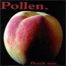 Peach Tree by Pollen (1997-03-25)